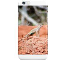Desert Reptile iPhone Case/Skin