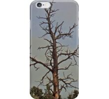 Twisted Trunks iPhone Case/Skin