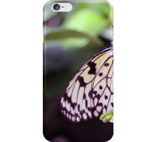 Sulphur Butterfly iPhone Case/Skin