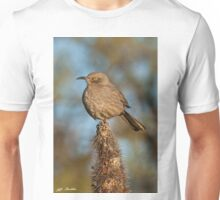 Curve-Billed Thrasher on a Cactus Unisex T-Shirt