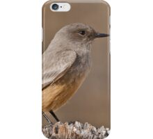 Say's Phoebe on a Fence Post iPhone Case/Skin
