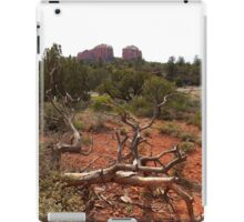 Red Rocks and Junipers iPad Case/Skin