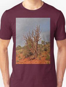 Gnarly Desert Juniper in Sunny Arizona T-Shirt