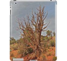 Gnarly Desert Juniper in Sunny Arizona iPad Case/Skin