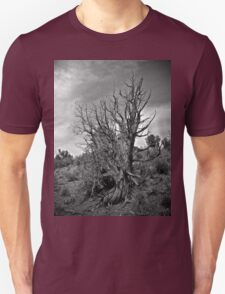 Juniper and Sky Black and White T-Shirt