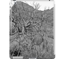 Twisted Thoughts, Bell Rock Vortex Sedona iPad Case/Skin