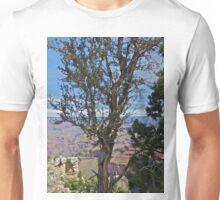 Grand Canyon 14 Unisex T-Shirt