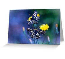 The Checkerspot Couple Greeting Card