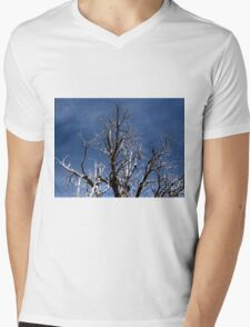 Grand Canyon 27 Mens V-Neck T-Shirt