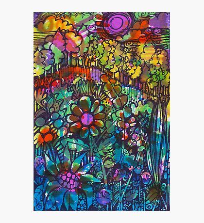 Rainbow Field  - Kerry Beazley Photographic Print