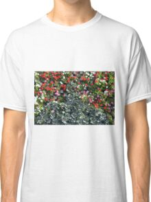 Natural background with small red flowers among green leaves. Classic T-Shirt