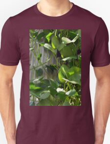 Green leaves next to a classical column. T-Shirt