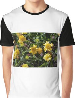 Many joyful yellow flowers in the garden. Graphic T-Shirt