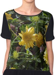 Many joyful yellow flowers in the garden. Chiffon Top