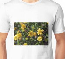 Many joyful yellow flowers in the garden. Unisex T-Shirt