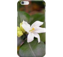 Small white flower and green leaves. iPhone Case/Skin