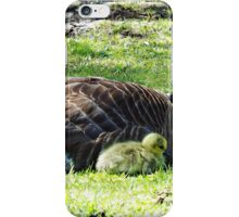 Struggling Against Extinction iPhone Case/Skin