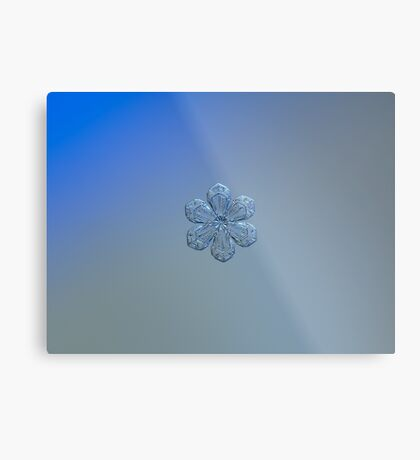 Forget-me-not, real snowflake photo (gradient background) Metal Print