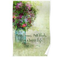 Weeds Dreams Life Poster