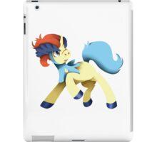 Keldeo  iPad Case/Skin