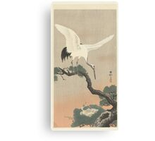 Japanese crane on branch of pine, Ohara Koson, Matsuki Heikichi Canvas Print
