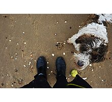 Dog and shoes Photographic Print