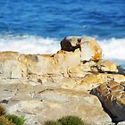 Kleinmond Sphinx by CrismanArt