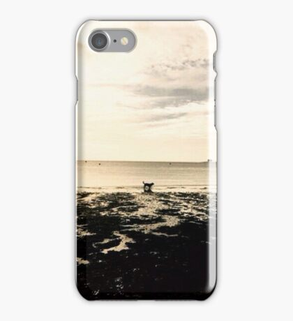 Silver Silhouetted Dog On A Beach iPhone Case/Skin