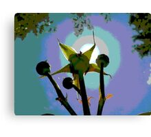 Reaching for the Sun Canvas Print