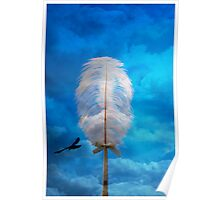 white feather and bird flying Poster