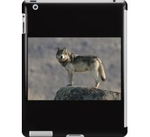 The Wolf's Appraisal iPad Case/Skin