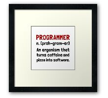 Programmer Definition Framed Print