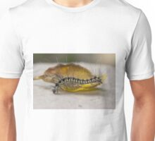 The Awakening Caterpillar Unisex T-Shirt