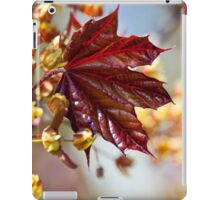 Young maple leaf iPad Case/Skin