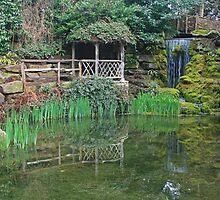 The Sunken Garden by RedHillDigital