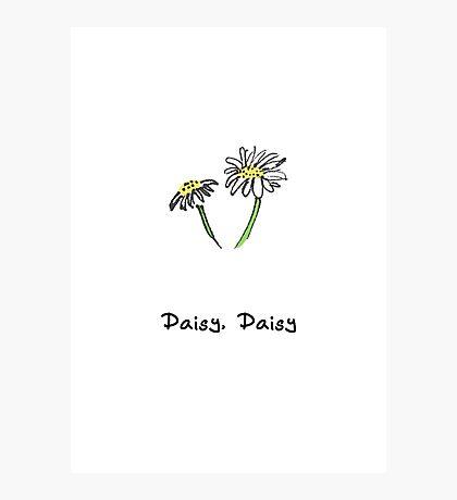 Daisy, Daisy Photographic Print