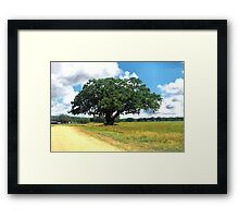 Painted Tree Framed Print