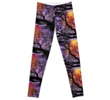 Branches in the Sunset Leggings