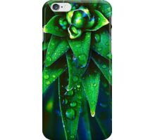 Morning Dew On Plant iPhone Case/Skin