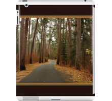 Wilderness Drive in Itasca State Park  surrounded by pines iPad Case/Skin