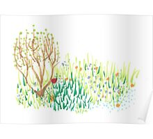 Spring In The Front Garden Poster