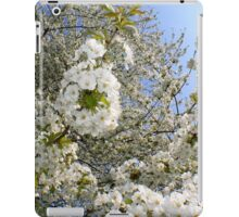White Blossoms, Springtime iPad Case/Skin