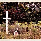 """ 'THE CEMETERY' "", a Series, #13, Hinds Valley Cemetery Clothed in Nature's Garment ""... prints and products by © Bob Hall"