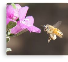 A Bee for Every Product  Canvas Print