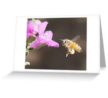 A Bee for Every Product  Greeting Card