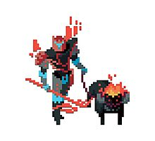 Rivan the Tamer - Hyper Light Drifter Photographic Print