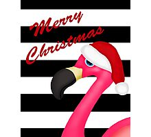 Pink Flamingo Christmas Photographic Print