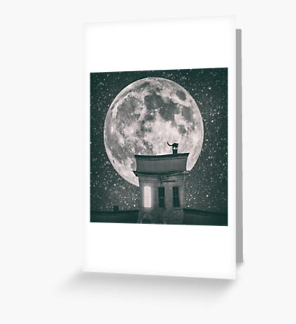 Cat by night - part one Greeting Card