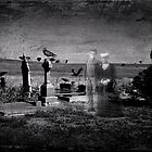 Apparitions by Steven  Agius
