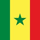 Senegal Flag Products by Mark Podger
